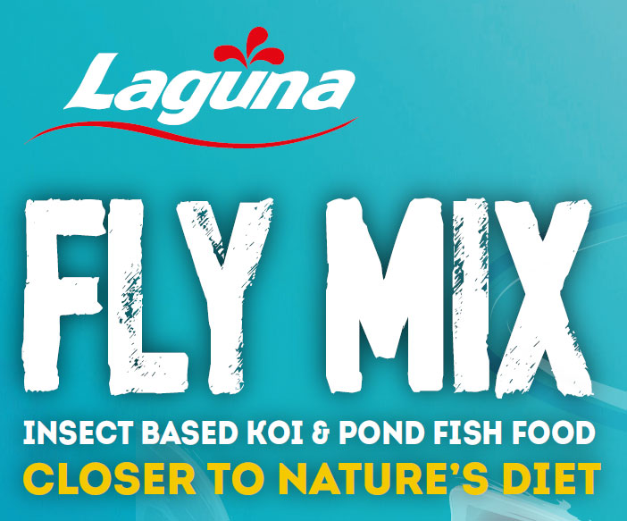 Koi and Pond Fish Fly Mix